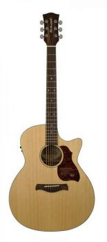 Richwood Master Series G-22-CE